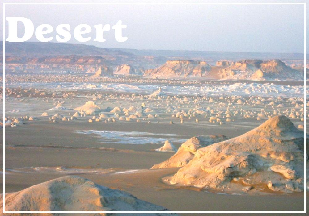 エジプト砂漠ツアー/白砂漠ツアー