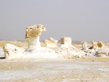 白砂漠ツアー/RAtrip