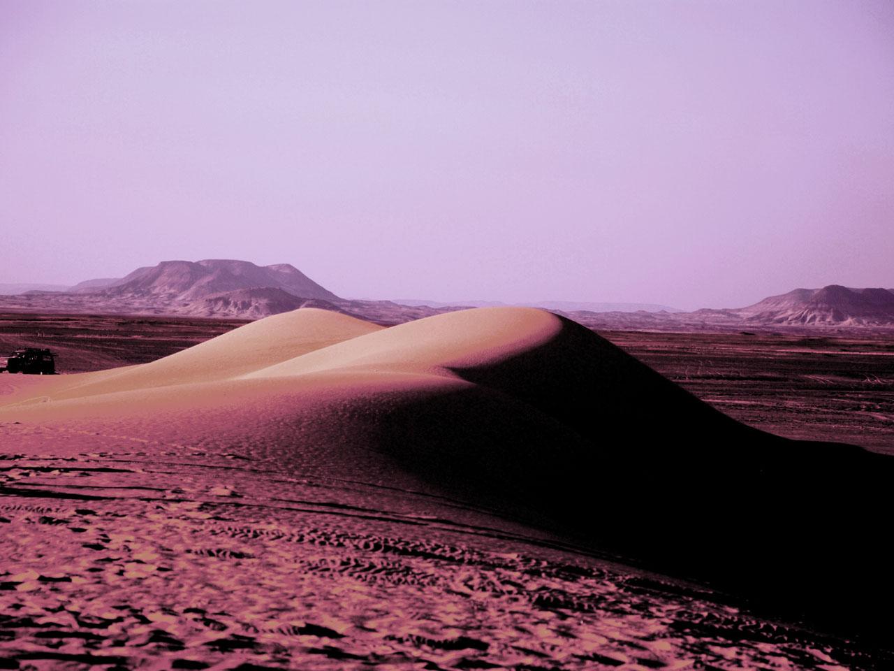 エジプト砂漠ツアー